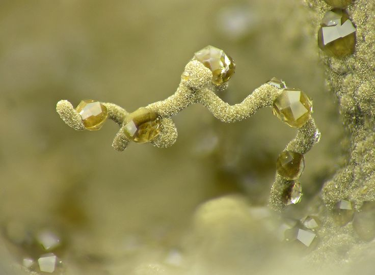 Tiny crystals of Analcime studding a vermiform clay mineral / Five Mile Quarry, Washington