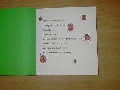 afscheidsboekje groep 2