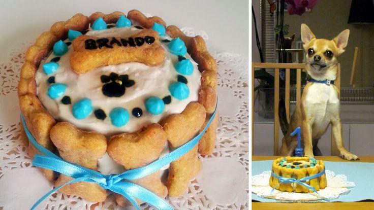 Ricette a quattro zampe - Torta di compleanno per cani
