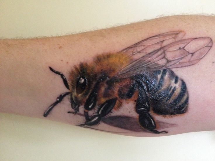 ... Bee Tattoo on Pinterest | Honey bee drawing Bumble bee tattoo and Bee
