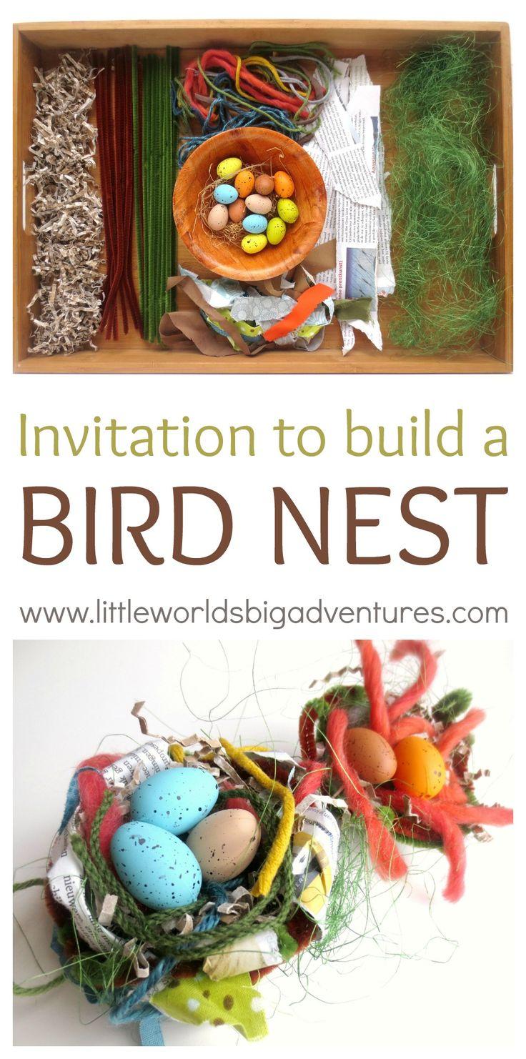 Invitation to Build a Bird Nest   Little Worlds, Big Adventures