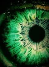 зеленые глаза - Поиск в Google
