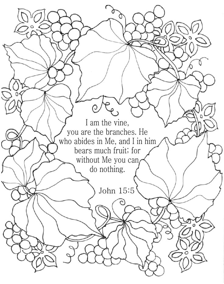 i am the vine bible coloring page for adults john 155 nkjv - Religious Coloring Books