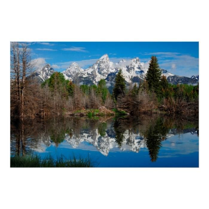 Customizable #Blue #Clouds #Dead#Tree #Evergreen #Flora #Grand#Teton#National#Park #Grand#Tetons #Green #Landscape #Michel#Hersen #Mountain #National#Park #Natural#Wonder #Nature #Nobody #Reflection #Scenic #Schwabachers#Landing #Snake#River #Snow#Covered #Usa #Vista #Water #Western #White #Wyoming Schwabacher's Landing Grand Teton Poster available WorldWide on http://bit.ly/2fNoM2O