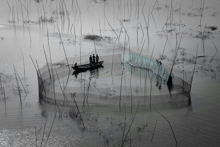 Yann Arthus Bertrand