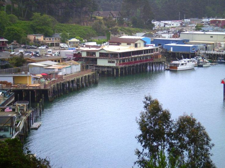 21 best fort bragg ca images on pinterest fort bragg for Fort bragg fishing charters