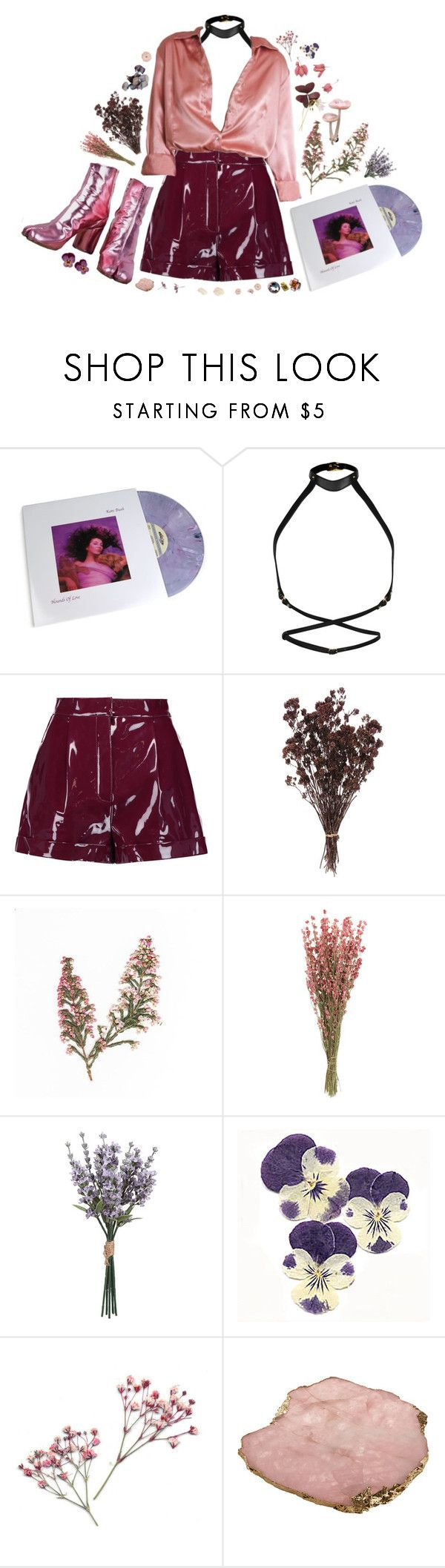 """""""HOUND OF LOVE"""" by thinvein ❤ liked on Polyvore featuring Zana Bayne, Valentino and Anna New York"""