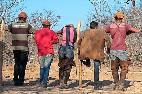 Pega de Boi é uma competição entre vaqueiros bastante comum no Sertão. Diferentemente da vaquejada, onde o boi precisa ser…