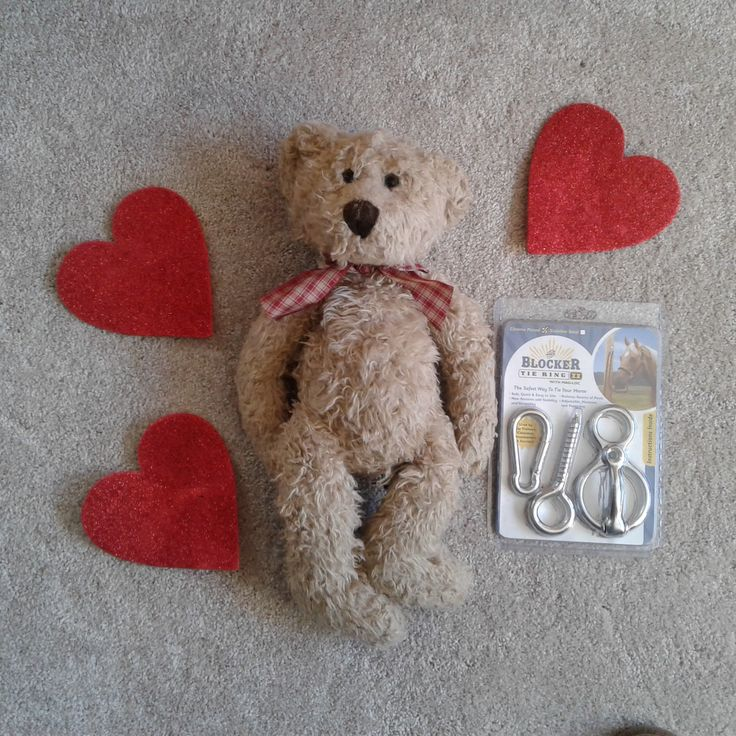 Valentines day is not just for lovers. Show your horse how much you love them by providing them with a Blocker Tie Ring. The safest way to tie a horse!