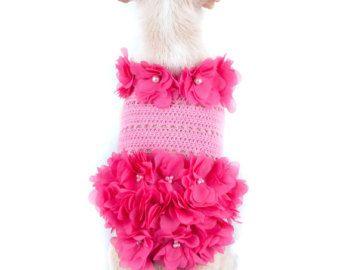 Abiti da principessa cane rosa lusso Design con perle