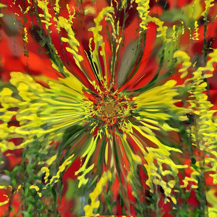 RED AND YELLOW II BY TATIANA LOPATINA.  VISIT OUR WEBSITE FOR MORE GREAT IMAGES www.lailas.com