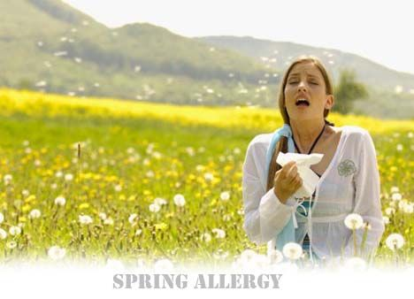 Tips To Treat Spring Allergy Symptoms