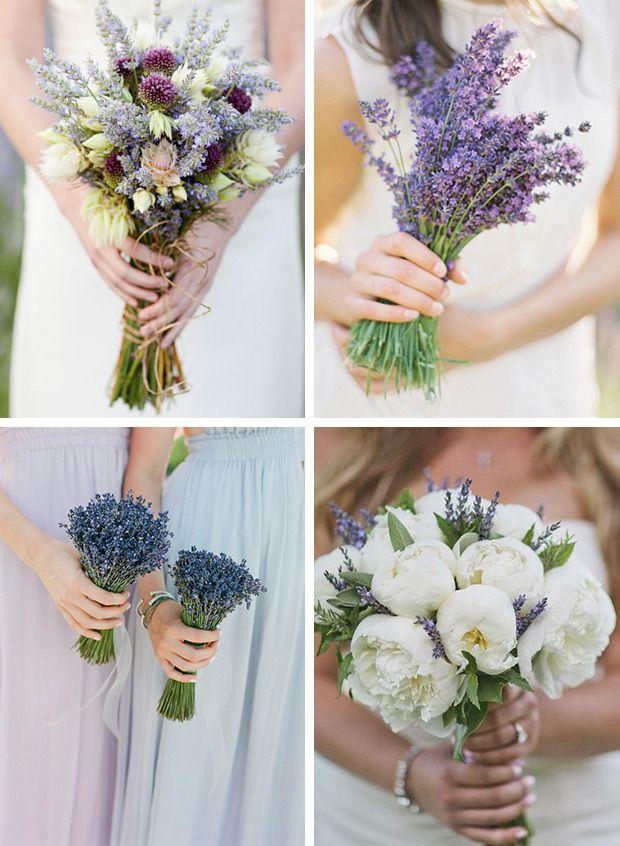 A host of gorgeous ways to have a Lavender incorporated into your wedding, from buttonholes & bouquets, to lavender wedding cakes & lemonade.