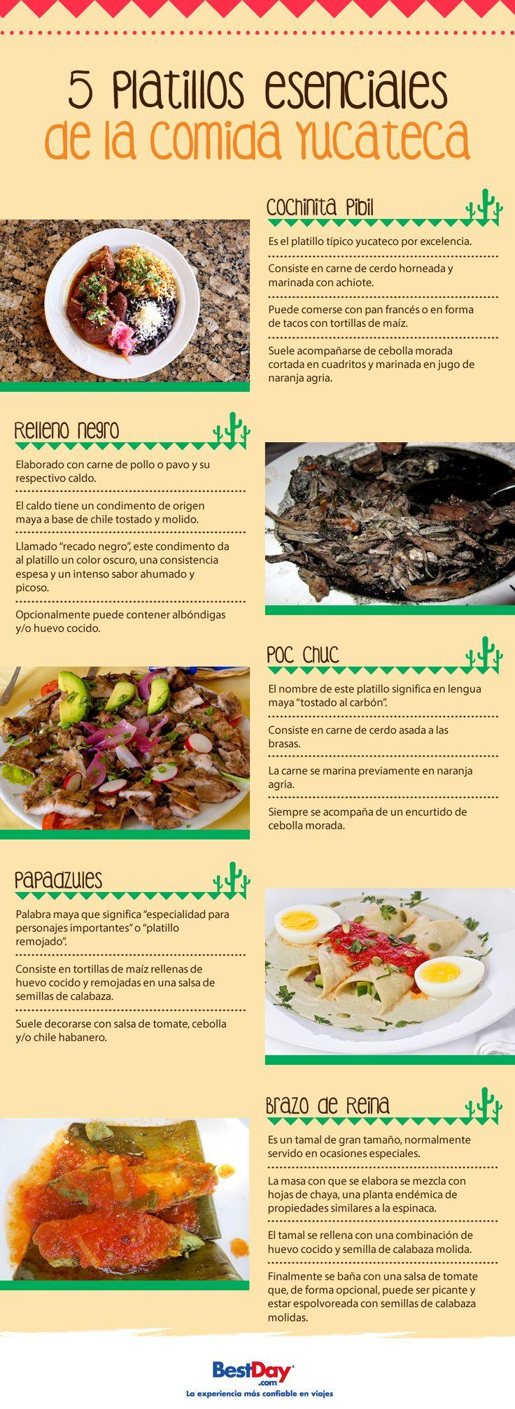 Seguro has oído hablar de la famosa comida yucateca, descubre los fascinantes platillos que estado puede ofrecerte para deleitar tu paladar.
