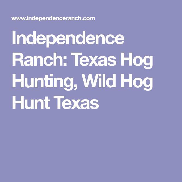 Independence Ranch: Texas Hog Hunting, Wild Hog Hunt Texas