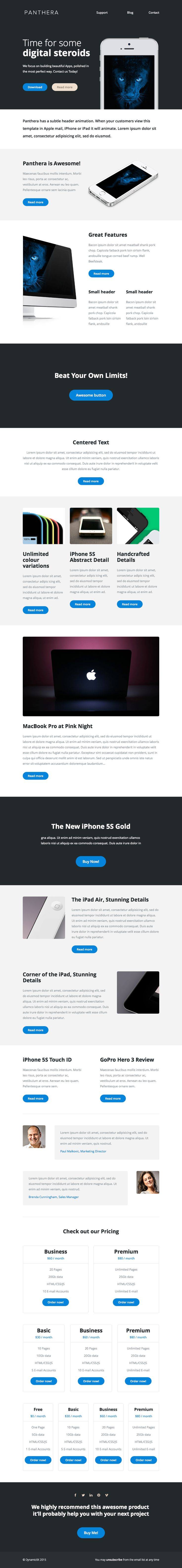 Best Newsletters Images On   Html Email Templates