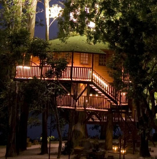 Adult tree house built over an eucaliptus centenary tree.  Located in a farm in Sao Paulo State - Brazil.  Built by Casa na Árvore Ltda.