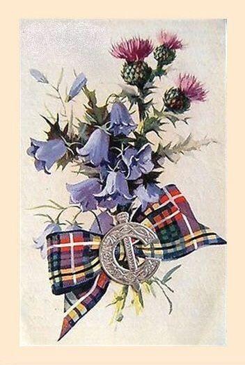 Шотландские открытки