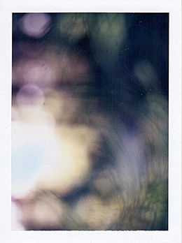 BLURR    One of a kind Polaroid photograph by Mark Borthwick. Measuring 3.5 x 4.25 in. 100% of proceeds will be donated to Doctors Without Borders.    PRINTED MATTER -