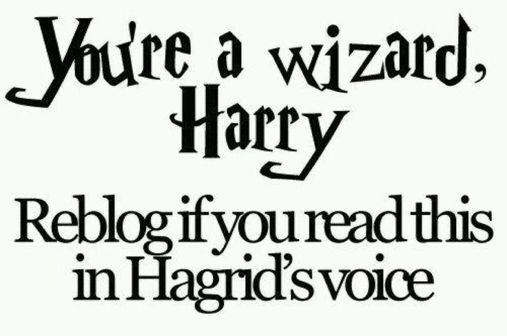 yer a wizard harry-Hagrid