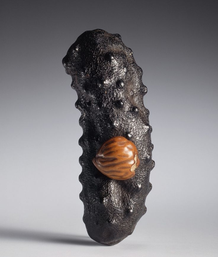 Sea Cucumber and Chestnut: Edible Treasures - Ōhara Mitsuhiro (Japan, 1810-1875). Japan, mid-19th century - Ebony, stained boxwood, ivory with sumi | LACMA Collections