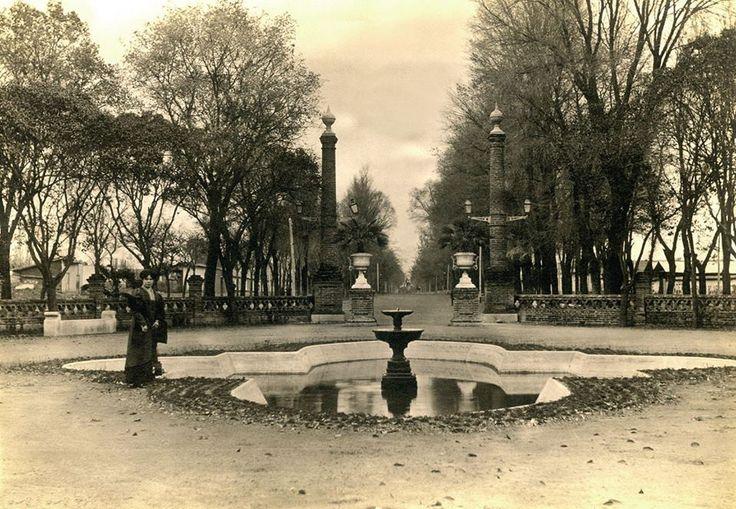 Alameda de Curicó. Ca. 1910