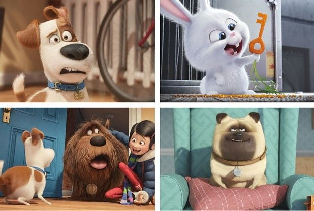 The Secret Life of Pets featuring the voices of Louis CK, Eric Stonestreet, Kevin Hart...REVIEW | Herts & Essex Observer