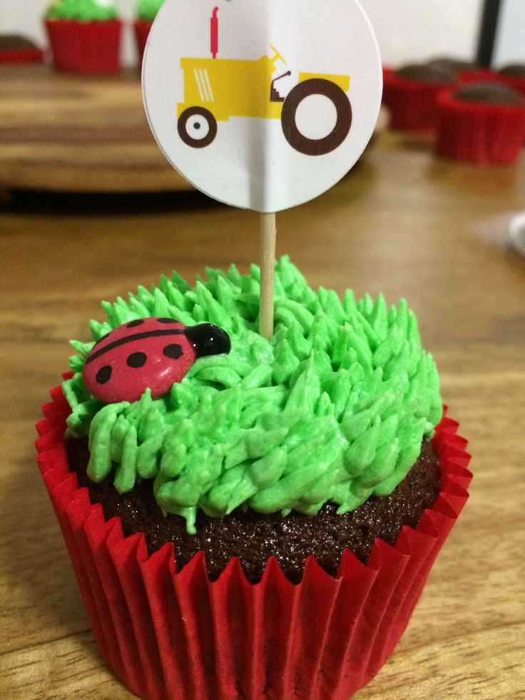 Ladybird in the grass cupcakes made by me for a farm themed party.