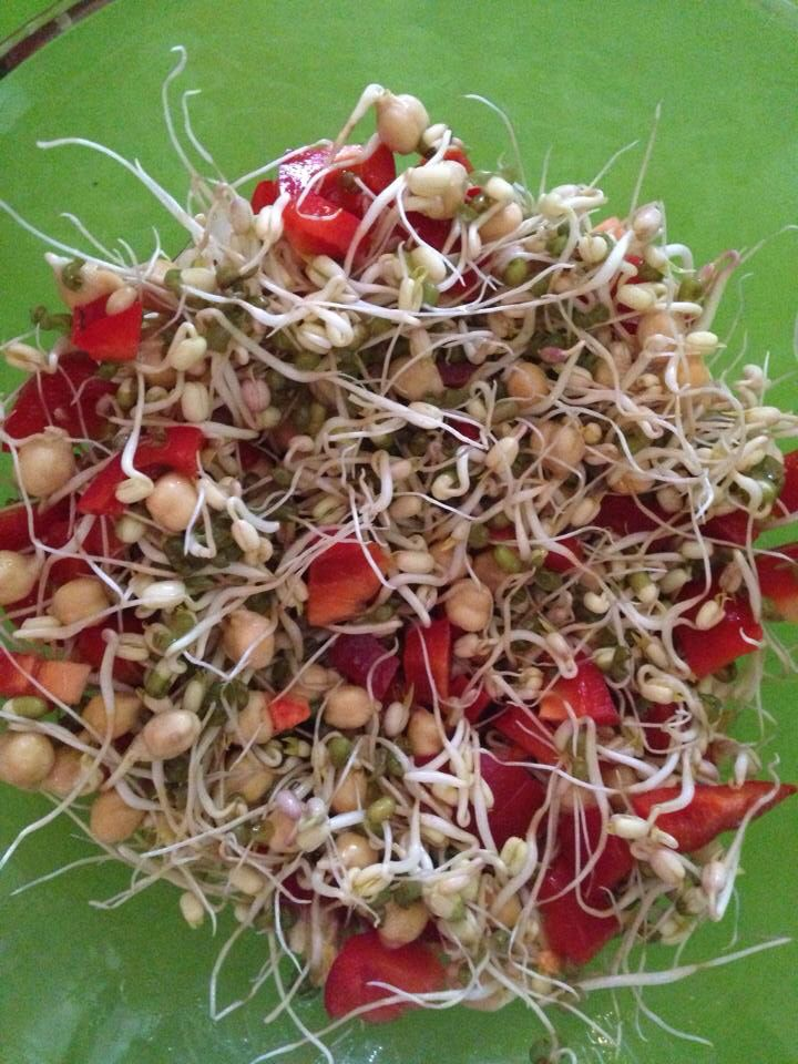 Mung Bean Salad with Red Bell Peppers