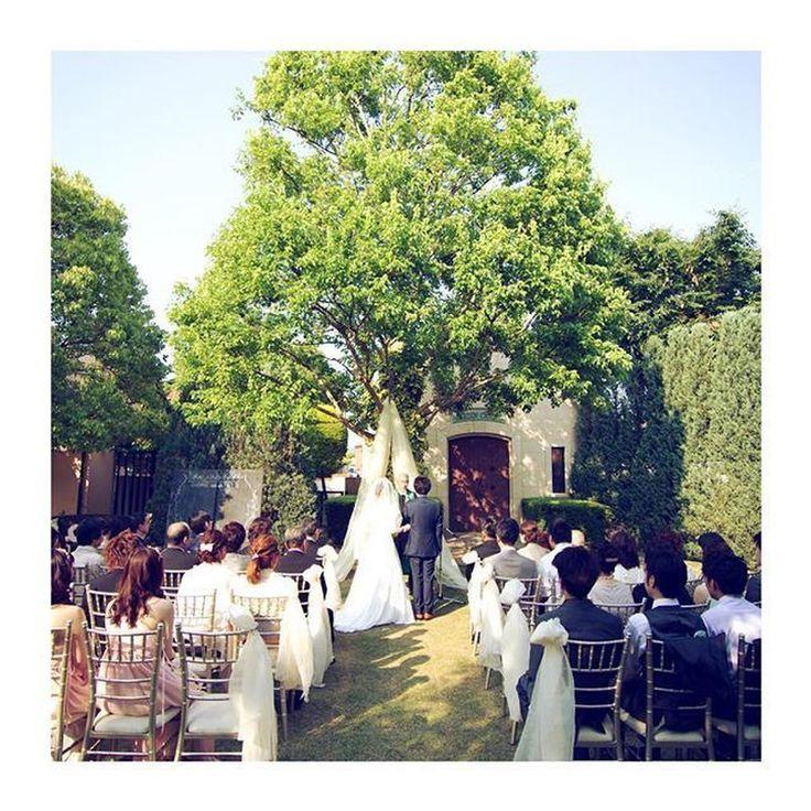 【結婚式レポ】緑×黄×白で統一☆ナチュラルガーデンウェディング