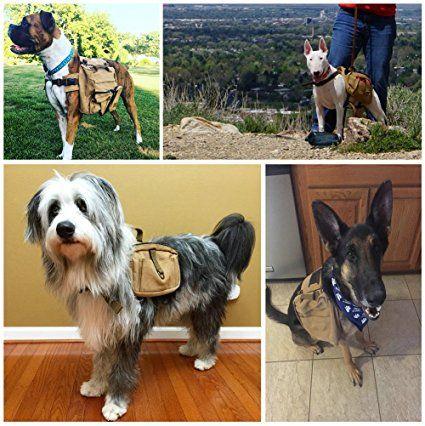 Lalawow tela zaino per cane cani borsa zainetto per cane cane da caccia (marrone): Amazon.it: Valigeria