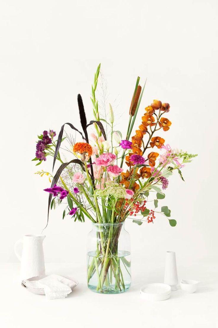 De allermooiste kleurrijke bloemen verzameld in één moodboard. Als deze collage je geen zomers gevoel geeft weten wij het ook niet meer!