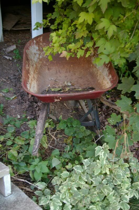 Red Wheel Weiser Online Bookstore: 1000+ Images About The Red Wheelbarrow On Pinterest