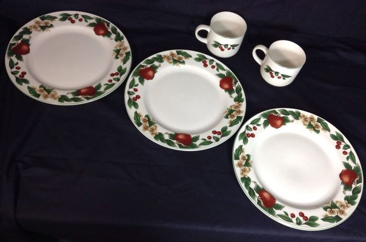 Christmas Rose China