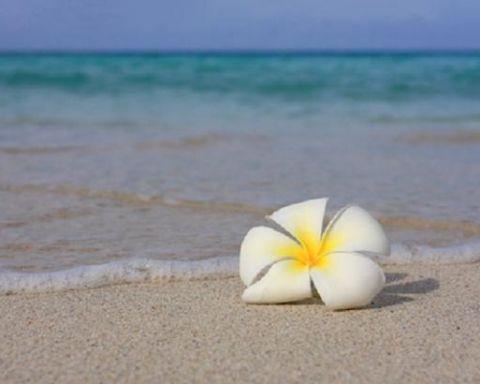 10 Fakta Tentang Bali Yang Tak Terucap