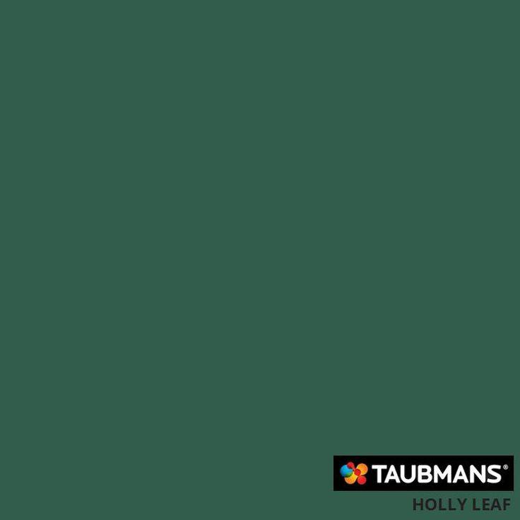 #Taubmanscolour #hollyleaf