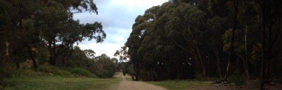 Centre Break, Langwarrin Flora and Fauna Reserve