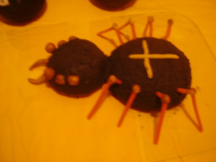 spider of halloween