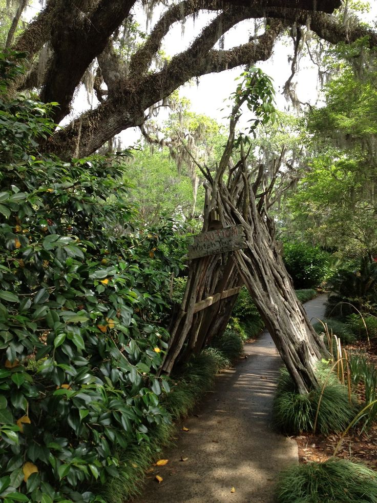 Children of the Corm: A Charleston Garden Blog:  Child's garden