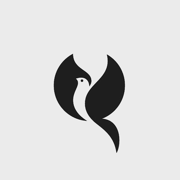 Pigeon logo design ♥♡