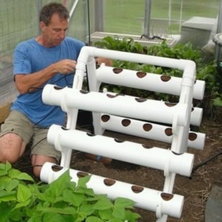 Pvc Garden Projects: 261 Best Images About Grow Your Own On Pinterest
