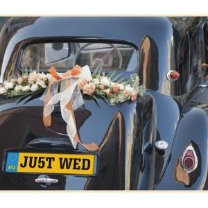 Plaque dimmatriculation Mariage pour décoration de voiture de mariage / Wedding car number plate