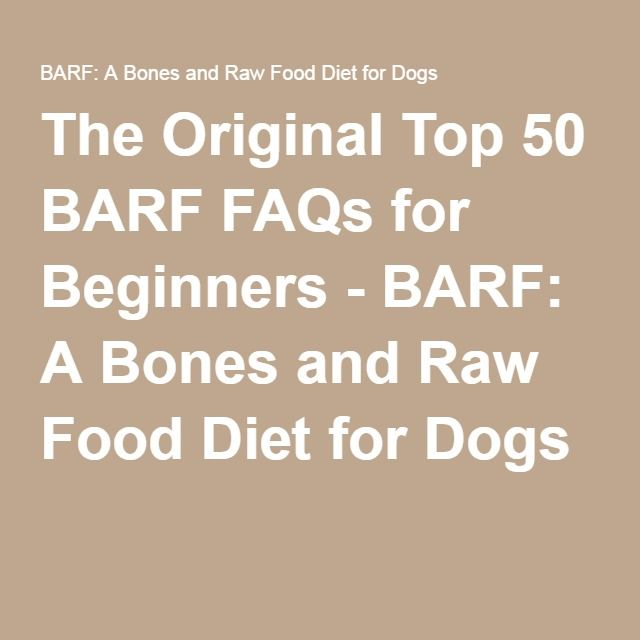 how to start raw diet for dogs