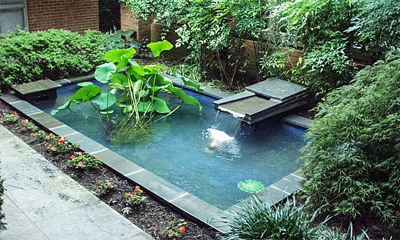 Rectangular Zen Pond Merging The Fountain And The Pond, This Backyard Water  Feature Is Sure To Attract Bathing Songbirds. An Ample Ledge Aro.