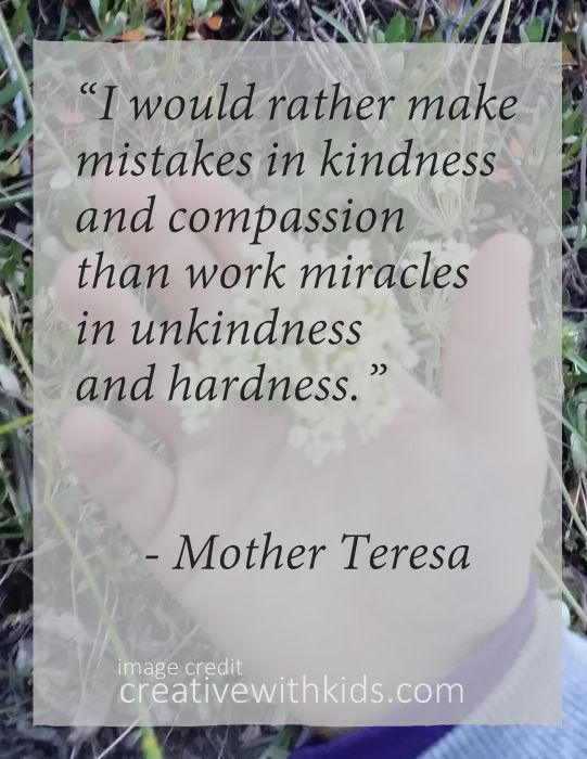 """I would rather make mistakes in kindness and compassion than work miracles in unkindness and hardness.""  Mother Teresa"