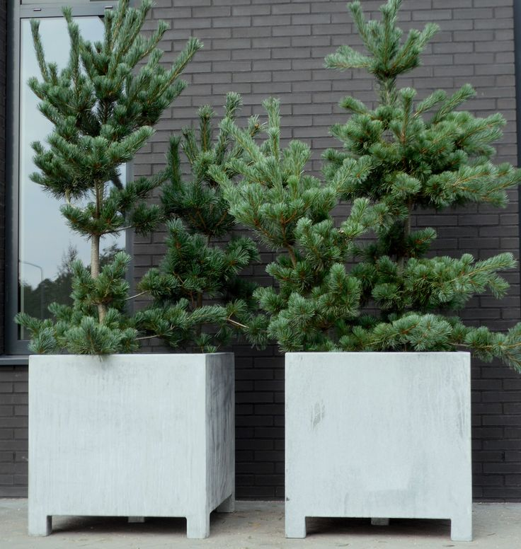 Gegalvaniseerde plantenbakken 'old look'