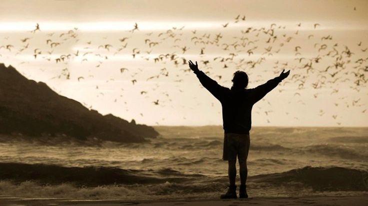 Κι αναρωτιέμαι πάλι οι προσευχές μου πού πάνε, κι αν έχουν γίνει πουλιά προς τα πού πετάνε - https://www.youtube.com/watch?v=lHKaLvKIcHY
