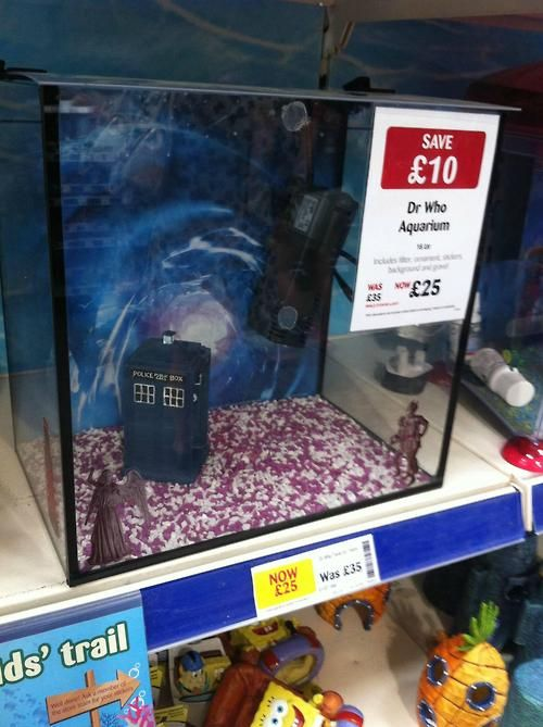 The best fish tank in all of time & space! And on another note...Why can't you have awesome whibley-wobbley timey-whimy stuff like this Walmart?!