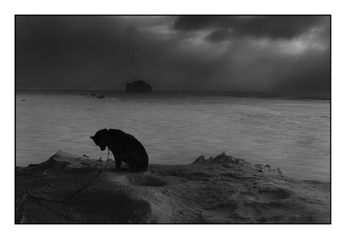 Voyage en ''Artic'' avec Ragnar Axelsson - Photo.fr