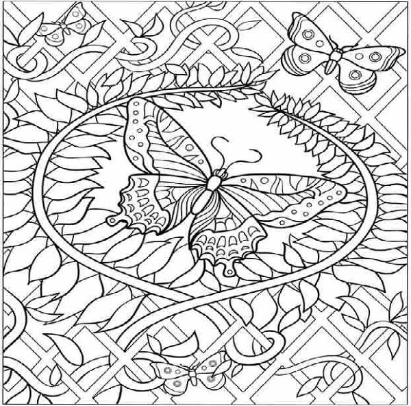 hard butterfly coloring pages - Printable Butterfly Coloring Page